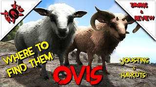 ARK: OVIS TAMING U0026 REVIEW! Patch 254 (plus Jousting And Haircuts!)