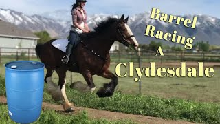 Barrel Racing A Clydesdale