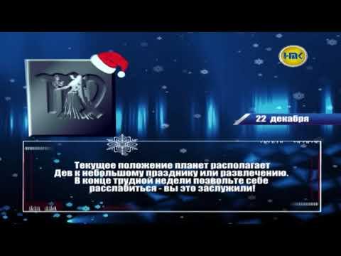 Гороскоп 2017 водолей кот женщина