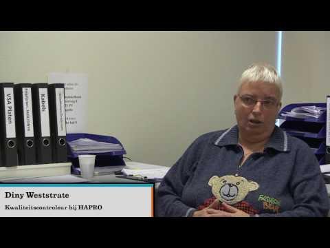 Bekijk details van Laaggeletterdheid in Zeeland: Taalambassadeur Diny Weststrate