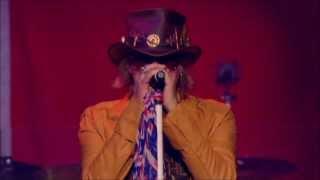 Ded Flatbird (Def Leppard) - Promises (Live)