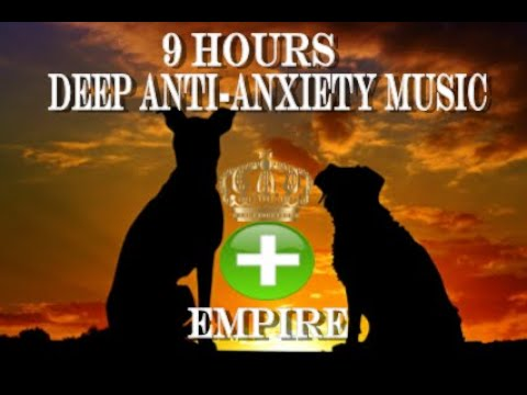 9 Hours Of Deep Separation Anxiety For Dog Relaxation(tested)
