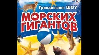 «Грандиозное шоу морских гигантов» в Курске 09.10.2016 г.
