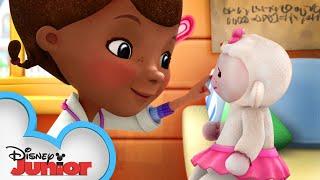Lambie Practices Social Distancing! | Doc McStuffins | Disney Junior