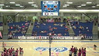 Lady Cat Volleyball Pink Night