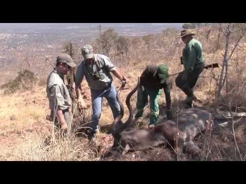 Ben Rumbaugh - Kudu Hunt 2014