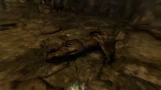 The Elder Scrolls V Skyrim Special Edition 34 серия Мечи красного Орла !