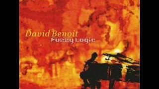 David Benoit Fuzzy Logic Music