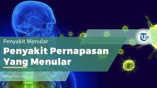 Penyakit Infeksi Saluran Pernapasan Akut (ISPA)