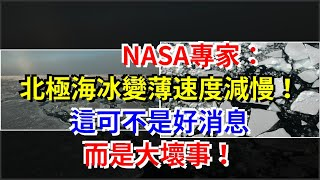 NASA專家:北極海冰變薄速度減慢!這可不是好消息,而是大壞事!,[科學探索]