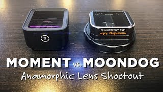 Moment vs. Moondog!
