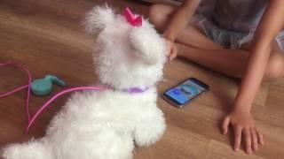Обзор Интерактивная собака Гого, щенок GoGo FurReal Friends Hasbro