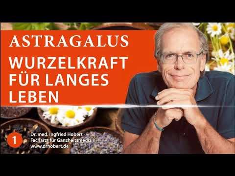 Astralagus - Wurzelkraft für ein langes Leben - Dr. Med. Ingfried Hobert - Podcast 1
