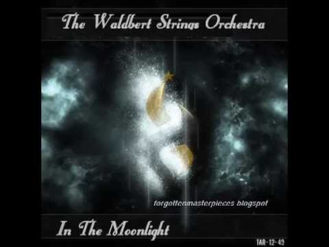 The Waldbert Strings Orchestra - Speak Softly Love (Godfather)