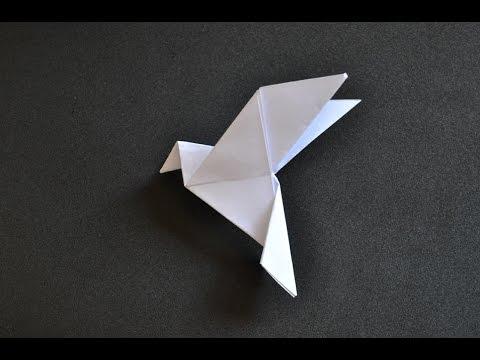 Home | Peace dove, Origami dove, Origami | 360x480