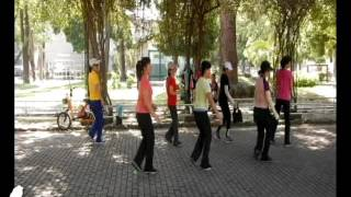 The Twelfth Of Never - Line Dance (Tina Chen Sue-Huei, Taiwan & Des Ho, S'pore)