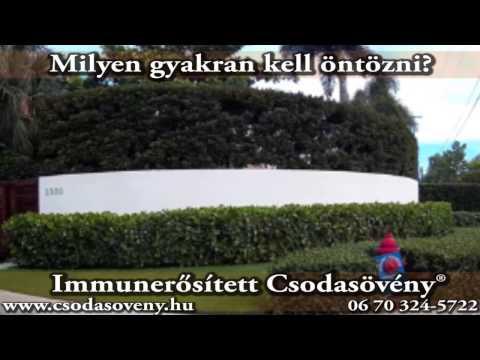 Metronidazol pinworm