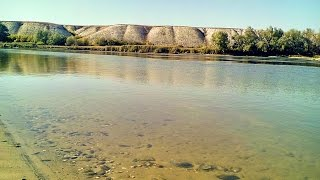 Рыболовная базы на реке дон