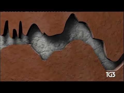 Il malysheva di papilloma un sintomo dinfezione con parassiti per liberarsi