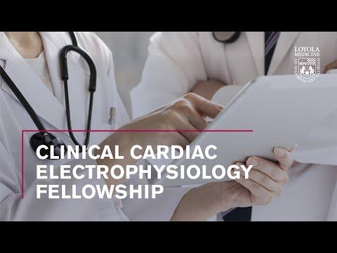 Clinical Cardiac Electrophysiology Fellowship at Loyola Medicine ...