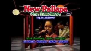 New Pallapa   Bahtera Cinta Agung Feat Wiwik Sagita