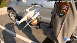 Drone crash in Yellowstone gets man banned, fined