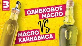 Масло каннабиса vs оливковое масло: что выбрать для здоровья?