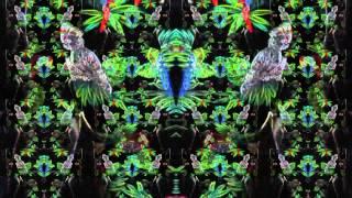 Space (Steve Kilbey)(Narcosis + More)