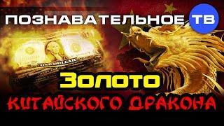 Золото китайского дракона (Познавательное ТВ, Валентин Катасонов)