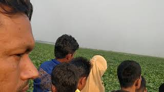 preview picture of video 'Water Hyacinth problem In Narsingdi sadar char area'