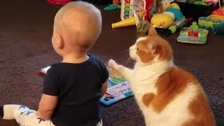These Encounters Between Babies And Cats Are Guaranteed To Melt Your Heart