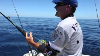 NEW VIDEO: Striped marlin and mahi mahi