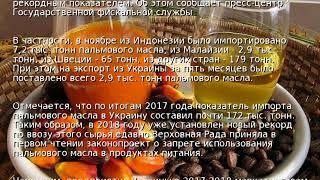 Украина рекордно импортировала пальмового масла