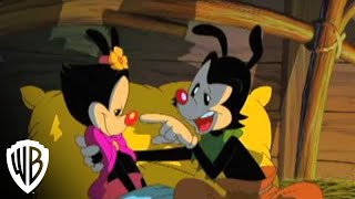 Steven Spielberg Presents Animaniacs: Wakko's Wish -  The Story