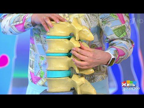 Жить здорово! Боль в спине. Артроз. (28.06.2018)