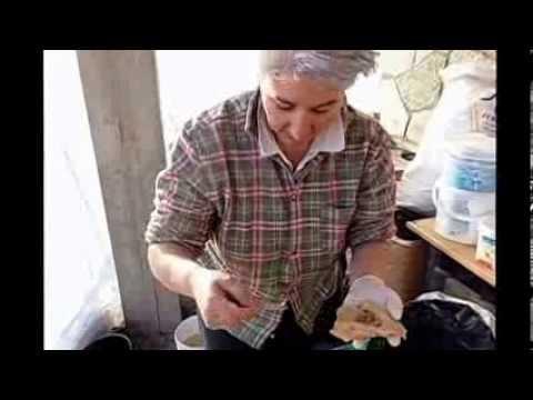 Farina di lino per risposte di perdita di peso