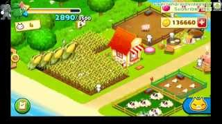 My Farm Game : Meow Meow Star Aces GamePlay