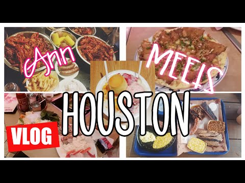 Video ???? Houston Travel Diary: Shaved Ice ????, Best Hotdogs, Crazy Gas Station⛽️! | MakeupANNimal ANNventures