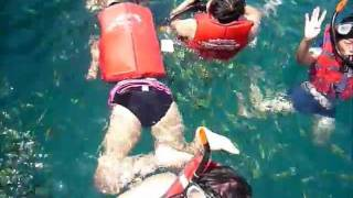 preview picture of video 'Phi phi island one day trip by speed boat'