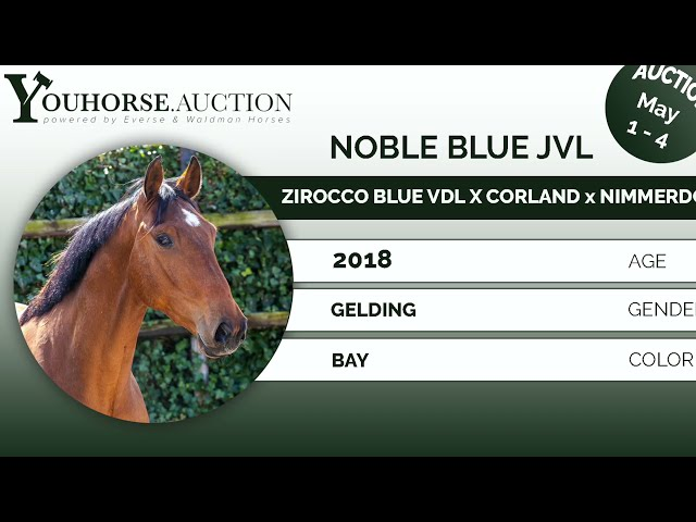 Noble Blue JVL