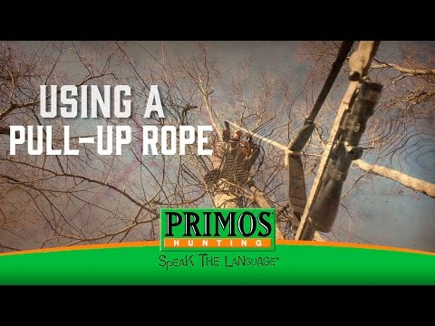 Importance of Using a Pull-Up in a Tree Stand video thumbnail