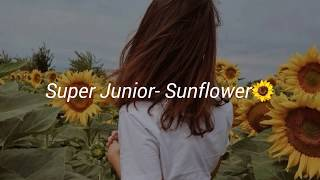 Super Junior- Sunflower [sub-español]