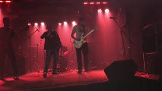 DGVM  - Kokain live