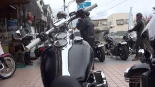 ビックな話題 素敵な女性ハーレーライダーと仲間たち 大いなるハーレー フルカスタムハーレー軍団 ハーレー動画 Harley Davidson Sportster