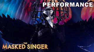 "Raven sings ""Rainbow"" | THE MASKED SINGER | SEASON 1"