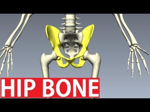 Dolore al collo che si estende alla spina dorsale