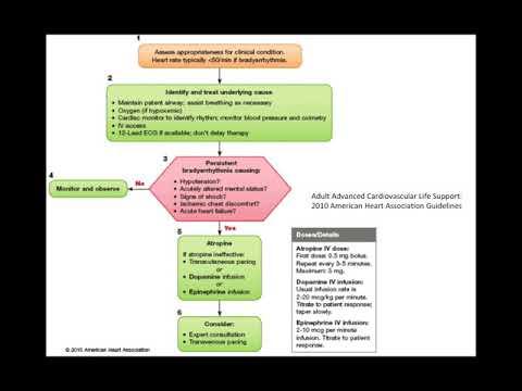 Distonia i tipit hypertensive