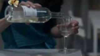 Гела Месхи, Физика или Химия 10 серия (Алекс и Ирина)