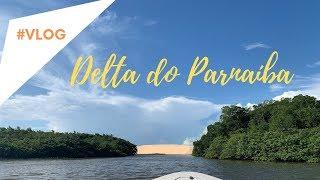 Passarinhando no DELTA DO PARNAÍBA- Revoada dos Guarás