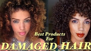 DAMAGED HAIR TREATMENT [ Healthy Hair Journey Series Pt. 2 ]